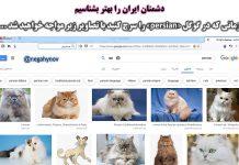 جستجوی کلمه Persian در گوگل - دشمنان ایران را بهتر بشناسیم