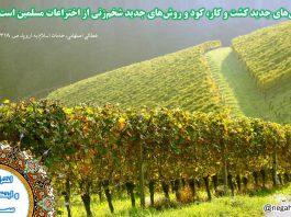 دستاوردهای اسلام - مسلمانان و کشاورزی - روش های جدید کشاورزی